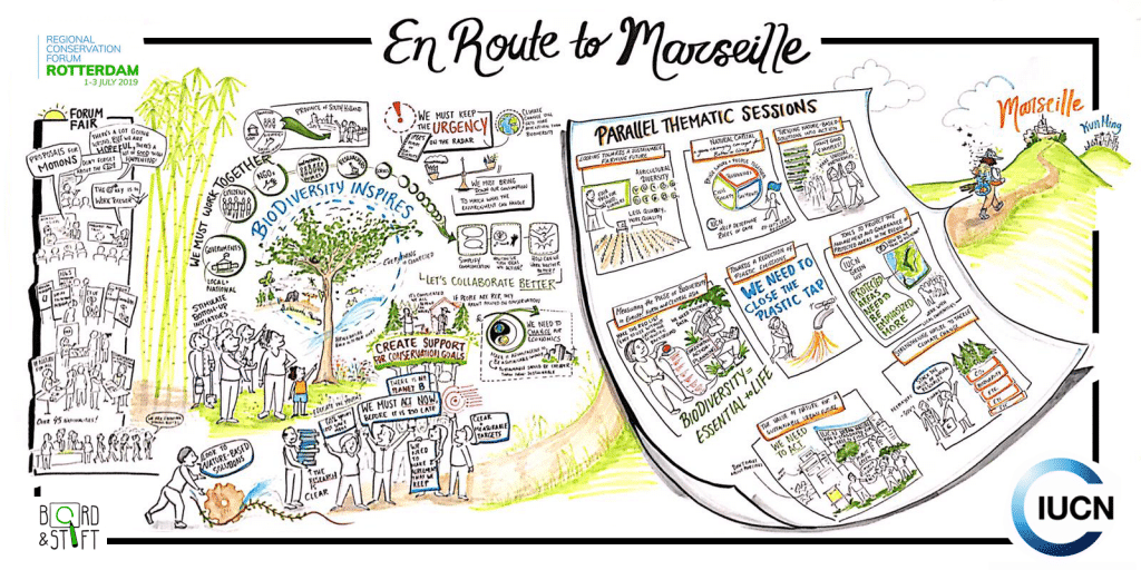 Live illustrator En Route to Marseille