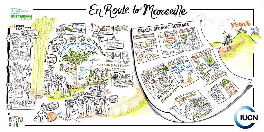 Live tekenaar En Route to Marseille